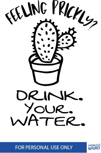 Funny Water bottle free SVG