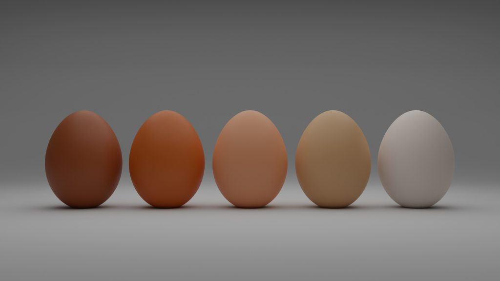 Eggs lined up based on the color gradation.